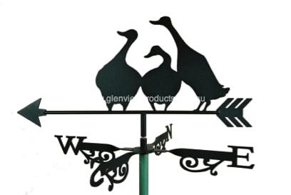 Aussie Duck Family