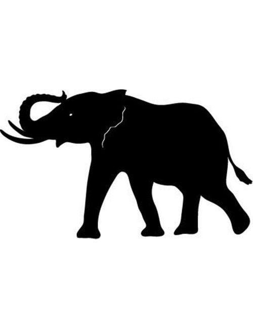 Bull Elephant 500x650 - Bull Elephant Panel