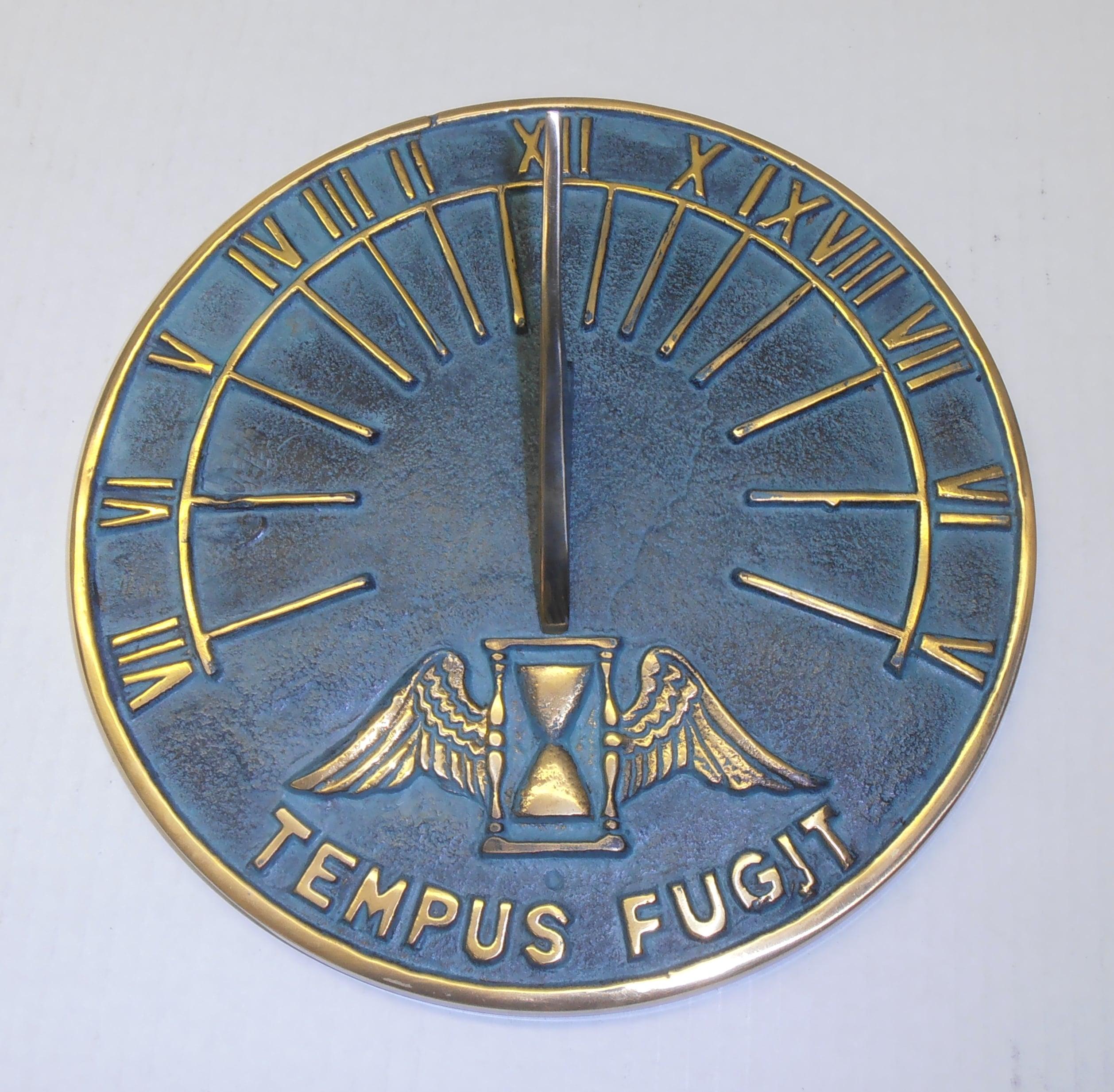 Time Flies Latin Insription