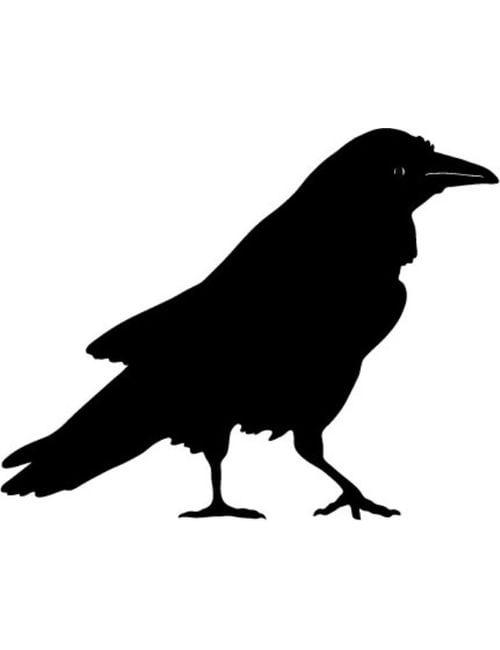 crow panel - Crow Panel