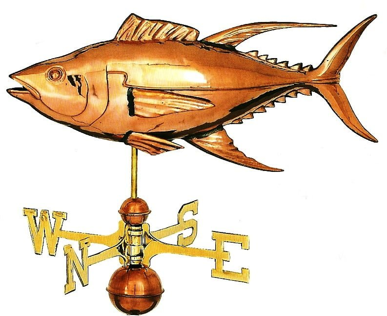 Studio Yellowfin Tuna