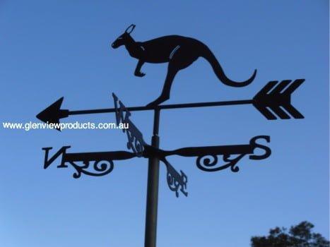 kangaroo, Australian Icon