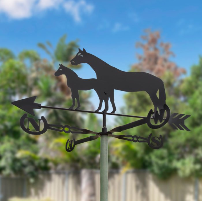 Robert15cropped 700x696 - Thoroughbred Mare & Foal Weathervane