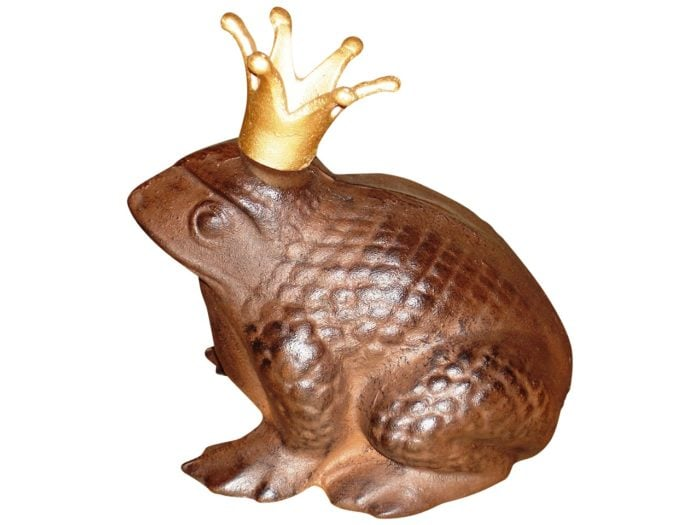 Frog Prince 2 700x525 - Frog Garden Safety Guard